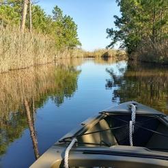 fishing bay WMA scout 1