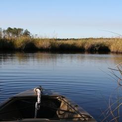fishing bay WMA scout 12