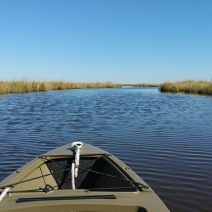 fishing bay WMA scout 2