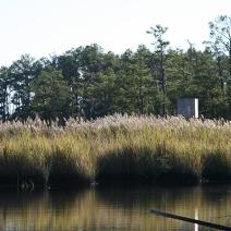 fishing bay WMA scout 9